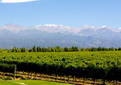 Trends in Wine Tourism - The Wine Travelers