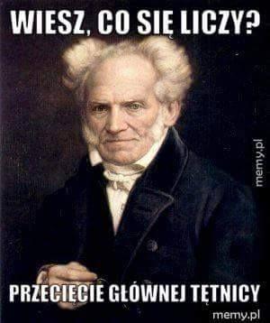 https://www.facebook.com/Arthur.Schopenhauer.memy/photos/a.1526610454304596.1073741828.1526599747639000/1547978035501171/?type=3