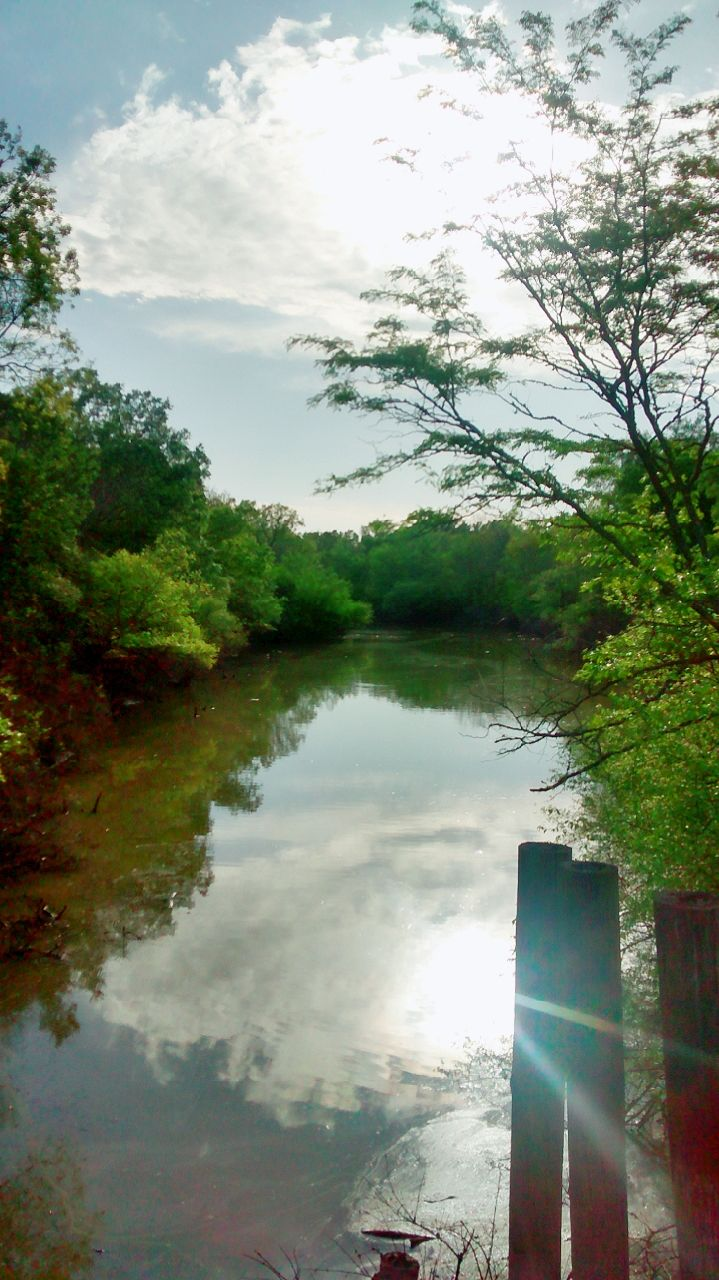 A beautiful day at the Nature Preserve Mineola Texas [719x1280]