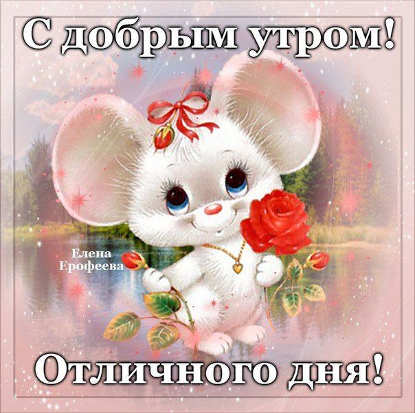 Поздравления, открытки доброе утро дорогая елена