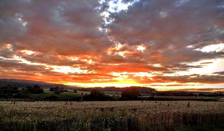 Summer evening in Gaienhofen #sunset #sunset_lovers #skyporn #summersunset #warmcolors #countryside #wheatfield #mountains #lakeconstance #Gaienhofen #Germany #puestasdesol #atardecerveraniego #ocaso #crepúsculo #camposdetrigo #lagodeconstanza #Alemania #sonneuntergang #sommer #dämmerung #Bodensee #Deutschland #kodak_photo #kodakpixpro #az362