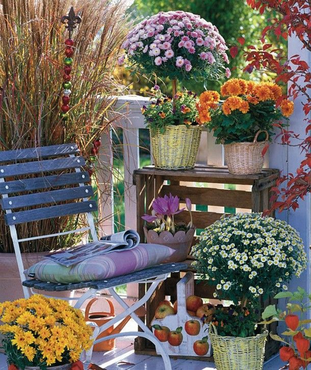 Image result for Fall Flowers in planter on covered porch