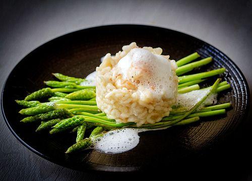 Risotto de langoustines, asperges sauvages poêlées et écume de parmesan // Scampi risotto, wild asparagus and parmesan scum