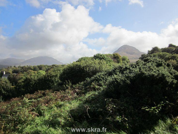 Montagne et forêts du Parc national du Connemara, Irlande