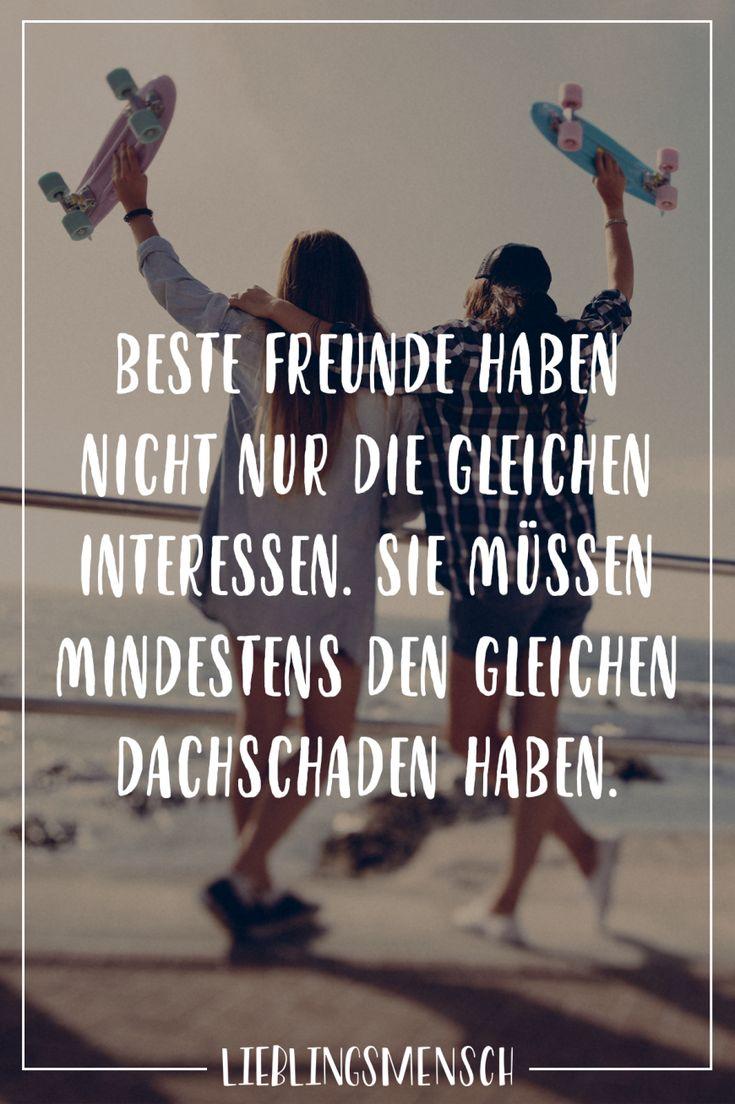 Beste Freunde haben nicht nur die gleichen Interessen. Sie müssen mindestens den gleichen Dachschaden haben