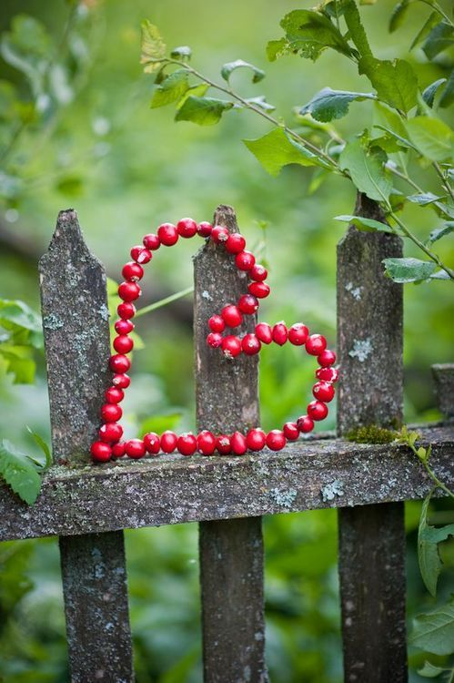 heart on the fence, posted via loveliegreenie.tumblr.com: