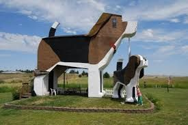 Image result for crazy animal homes