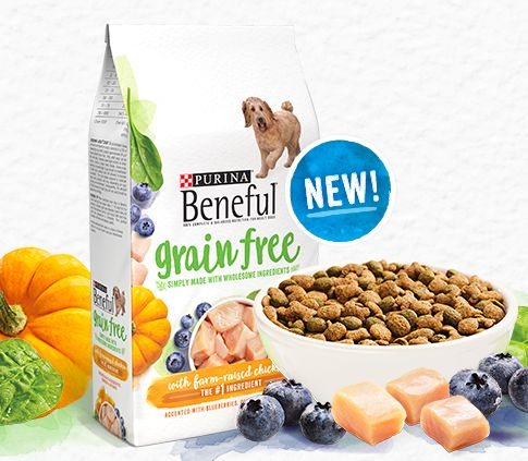 Best 25+ Free dog food samples ideas on Pinterest Free cat food - food list samples