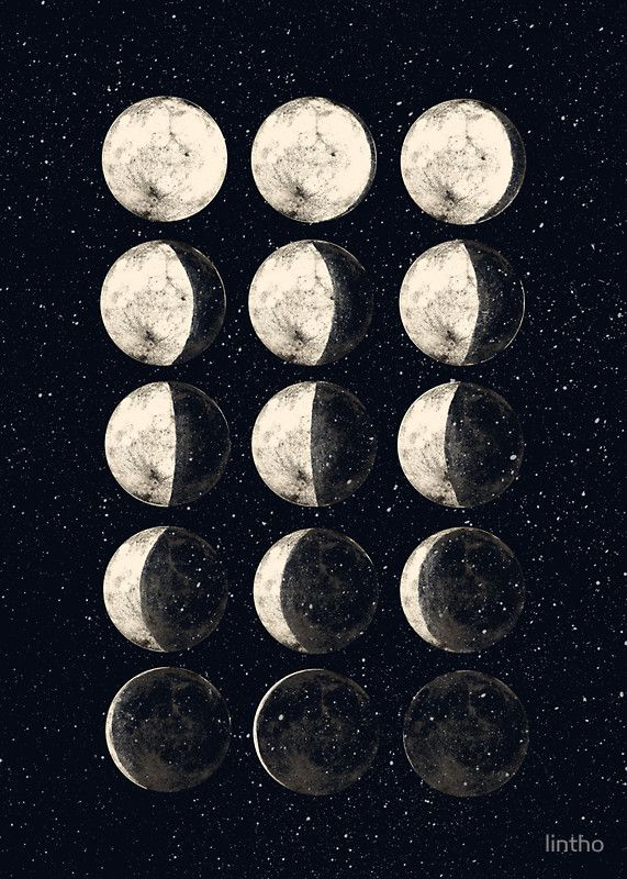 Moon Cycle by lintho