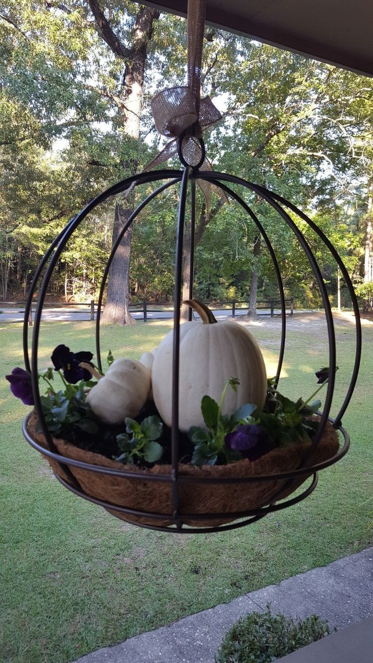 Pumpkins in hanging planter