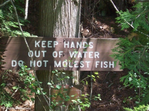 Just a funny sign: Warning Labels, Funny Signs, Funny Warning
