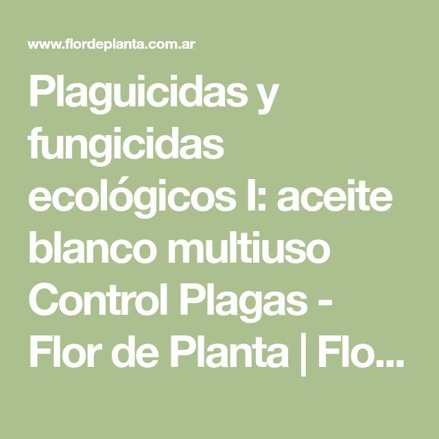 Plaguicidas y fungicidas ecológicos I: aceite blanco multiuso Control Plagas - Flor de Planta   Flor de Planta