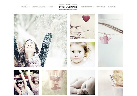 Tripod Professional WordPress Photography Theme