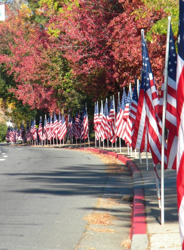 Parade of flags in Paradise, California IF ANYONE CAN GET ...