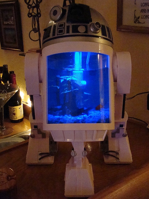 Is this the fish tank you're looking for? // This is TOTALLY the fish tank I was looking for @Nerdist Industries Industries