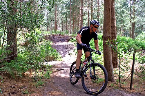mountain biking in cape town | the healthy holiday company