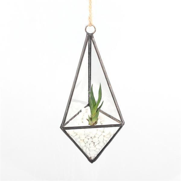 17 meilleures id es propos de terrarium suspendu sur pinterest terrarium plantes suspendues. Black Bedroom Furniture Sets. Home Design Ideas