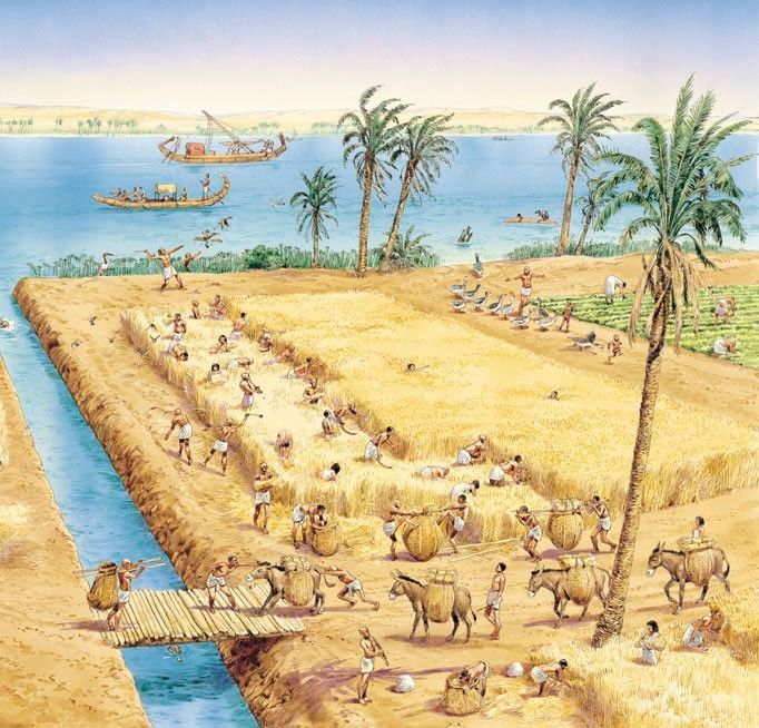 700 best images about Ancient History/Egypt on Pinterest