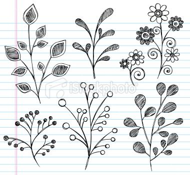Hand-Drawn Sketchy Notebook Doodles Leaves