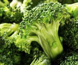 Vegetables That Are Good for Diabetic Dogs |