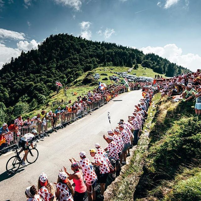 Steve Cummings Stage 7 TDF2016 by jeredgruber