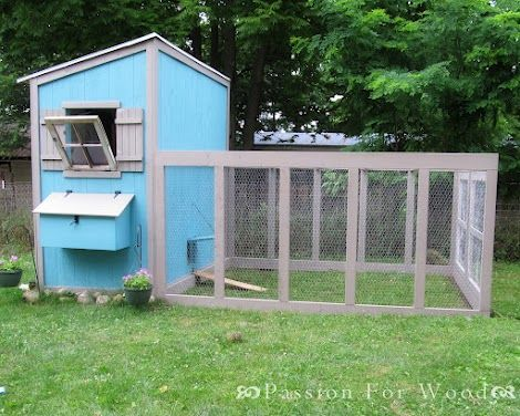 136 best chook pens images on pinterest chicken roost for Chicken run for 6 chickens