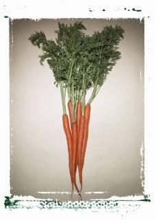 ... DETOX CARROT & GINGER SOUP | recipes // | Pinterest | Carrot Ginger