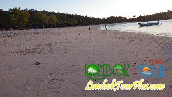 Salah satu pantai yang memiliki keindahan alam yang luar biasa adalah Pantai pink Pantai Pink sangat banyak di kunjungi wisatawan karena tertarik untuk di manjakan oleh alamnya. Lihat informasi di lomboktourplus.com/tour-3-hari-2-malam/wisata-pantai-pink-lombok/  jangan lupa untuk mengunjunginya yah bersama Lombok Tour Plus