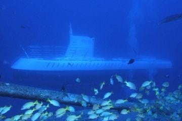 Visiter les fonds marins d'Hawaï à bord d'un sous-marin: 2 heures, 118$ par personne.