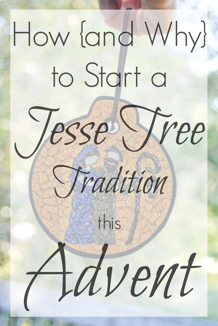 449 best cf catholic cookingcraftscreativity images on pinterest how and why to start a jesse tree tradition in your family this advent with a fandeluxe Gallery