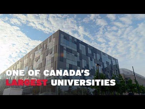52,000+ #students. 200+ programs. 283,000 #alumni around the #world: this is York U.
