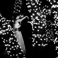 Yes, please! Black and white photo of bride and groom with trees wrapped in lights.