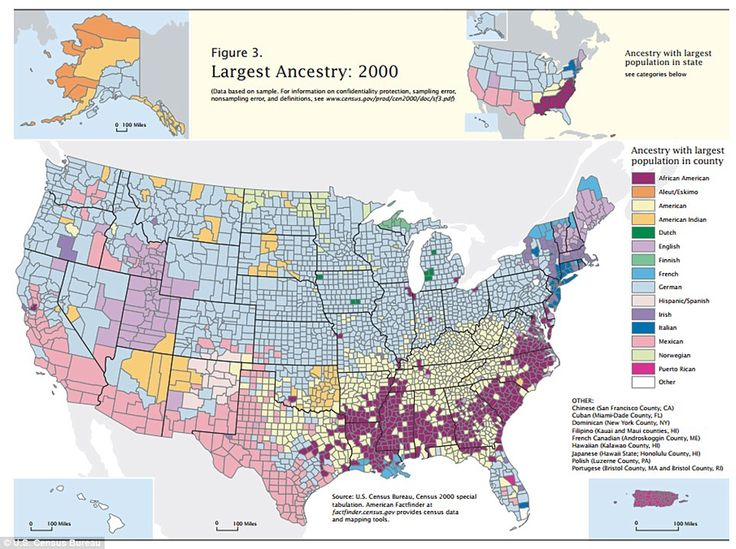 The map that shows where America came from: Fascinating illustration shows the ancestry of EVERY county in the US