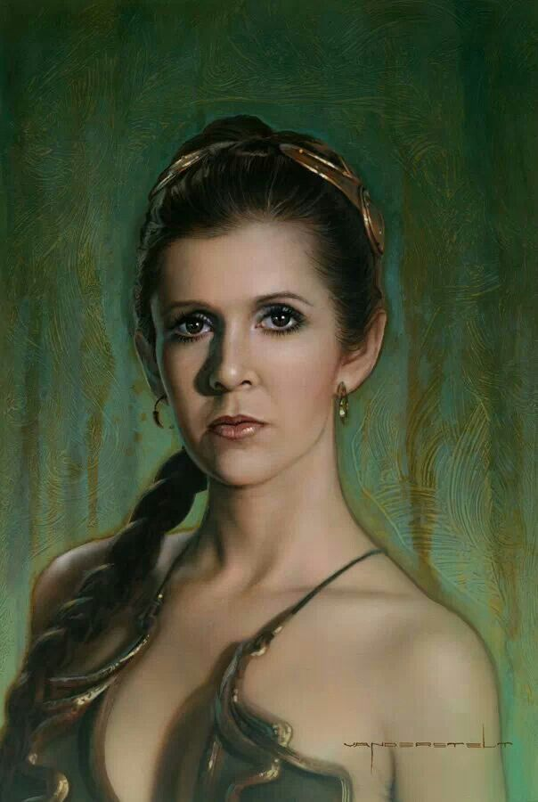 beautiful princess leia portrait by jerry vanderstelt star wars pinterest beautiful. Black Bedroom Furniture Sets. Home Design Ideas