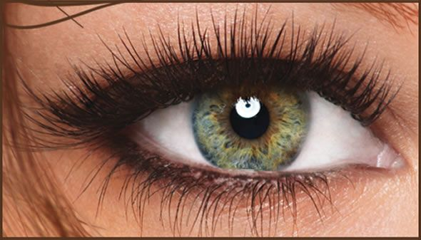 Beauty Offer: 30% Off Lash Perfect Eyelash Extensions (Feb 2012)