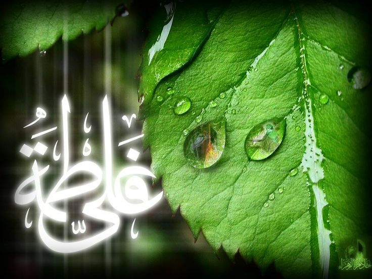 Islamic Back Ground Wallpapers