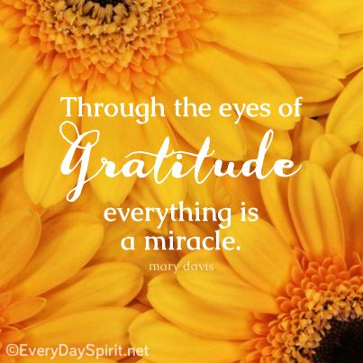 Gratitude makes miracles ~ #gratitude #miracles For the app of beautiful wallpapers ~ www.everydayspirit.net xo