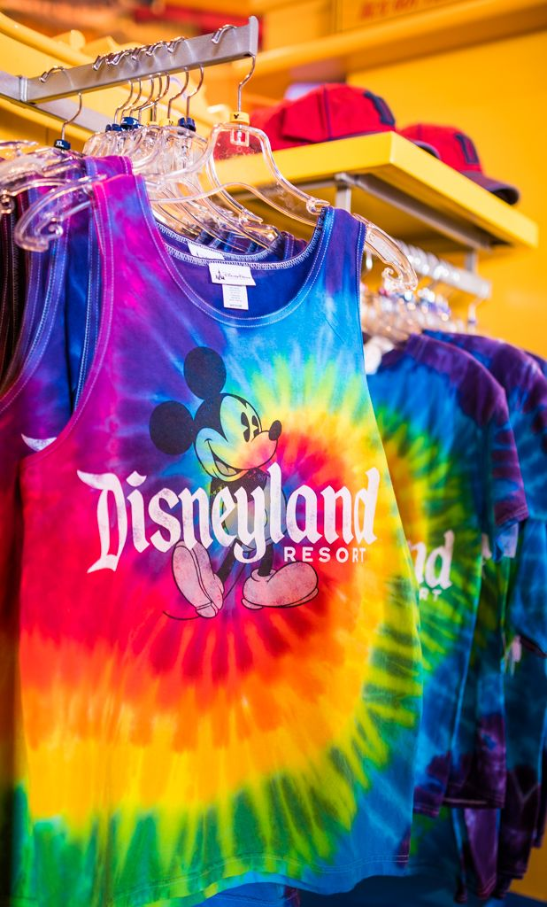 Looking for the perfect souvenir from your Walt Disney World or Disneyland vacation? This post offers tips for finding something you'll cherish for years t