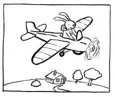 Haas vliegt