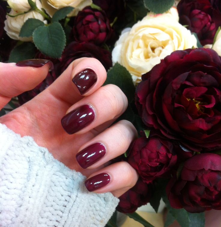 No.10 - Pinotage by Bio Sculpture Gel
