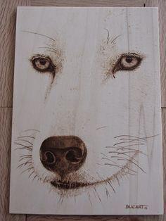 Pirograbado lobo ártico by Ducart. Contrachapado de abedul 30 x 21 cm.