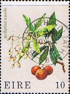 Eire Ireland 1978 Wild Flowers Fine Mint SG 422 Scott 429 Other European and British Commonwealth Stamps HERE!