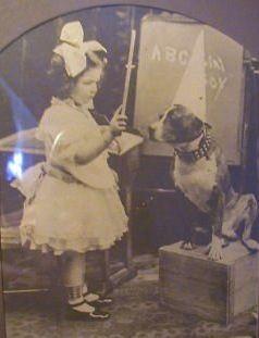 vintage-sepia-girl-pit-bull-dog-oak-framed-print-1920_2305938762131