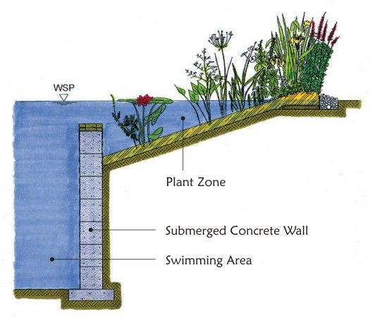 Natural Pools NZ, Eco-friendly natural swimming pools free of chemicals, naturally filtered