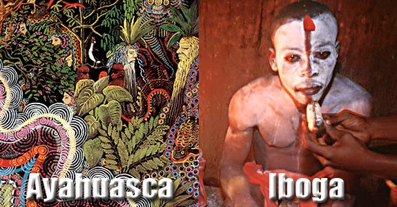 ayahuasca, iboga, comparison, review, analysis, ceremony, ibogaine