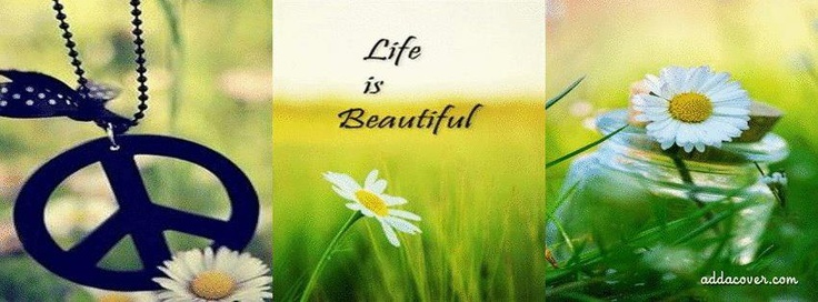Because life is beautiful...pass it on!