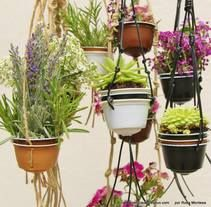 Mini jardín con cápsulas de café Dolce Gusto - Reciclado, reciclaje, upcycling