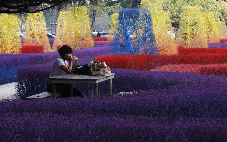 University of Thailand's Colorful Campus