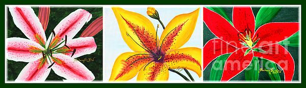 Oriental Daylily Trio in a border by Barbara Griffin.