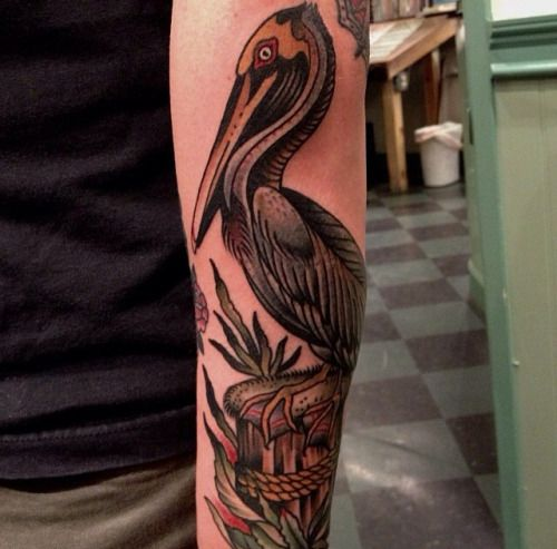 17 best ideas about pelican tattoo on pinterest pelican for Tattoo shops in hartford ct